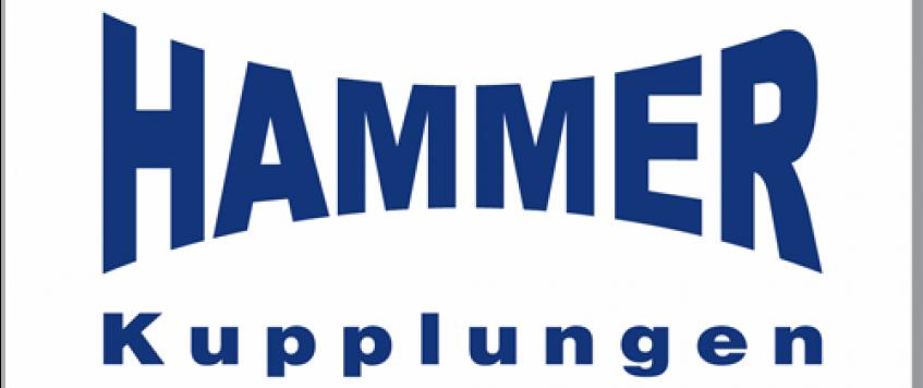 31-HAMMER